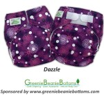 Dazzle One Size Pocket Diaper From Tiny Tush